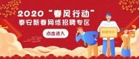 """2020""""春风行动""""泰安新春网络招聘专区"""
